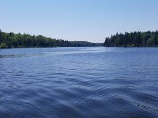 Land for sale in Saint-Marcel, Chaudière-Appalaches, 400, Route  285 Nord, 16149872 - Centris.ca