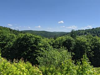 Lot for sale in Saint-Faustin/Lac-Carré, Laurentides, Allée du 5e, 13914144 - Centris.ca