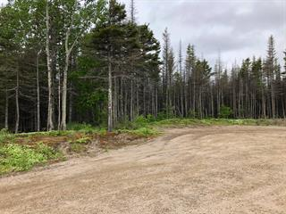 Lot for sale in Sept-Îles, Côte-Nord, 4520, Rue  Bond, 16388746 - Centris.ca