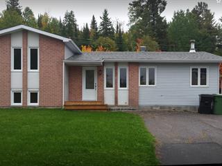 Maison à vendre à Témiscaming, Abitibi-Témiscamingue, 207, 2e Avenue, 24316616 - Centris.ca