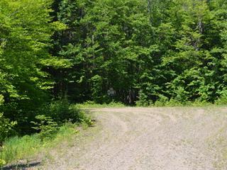 Lot for sale in Lac-Supérieur, Laurentides, Impasse des Chênes, 11843547 - Centris.ca