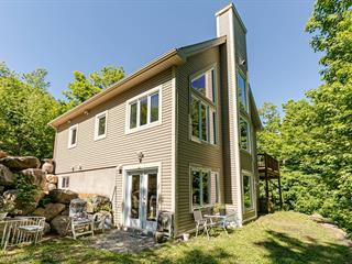 Maison à vendre à Sainte-Lucie-des-Laurentides, Laurentides, 2048, Montée du Cap-Violet, 12941017 - Centris.ca