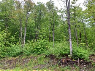 Land for sale in Sainte-Perpétue (Chaudière-Appalaches), Chaudière-Appalaches, Rang  Terrebonne, 27047578 - Centris.ca