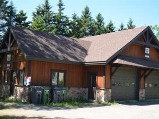 Bâtisse commerciale à vendre à Saint-Faustin/Lac-Carré, Laurentides, 421, Rue  Principale, 22576809 - Centris.ca