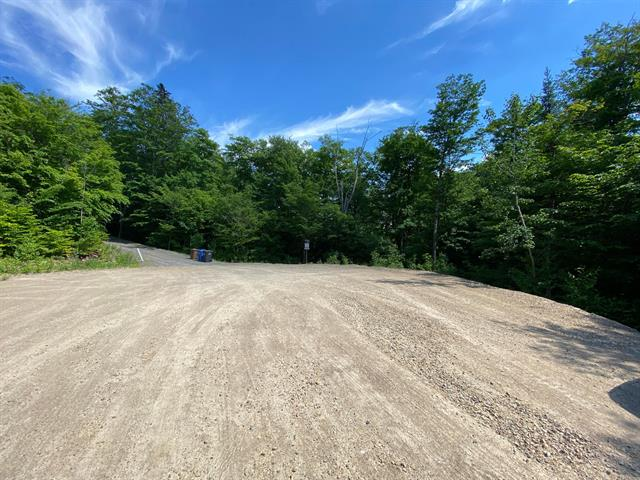 Lot for sale in Saint-Donat (Lanaudière), Lanaudière, Chemin des Cimes, 23735905 - Centris.ca