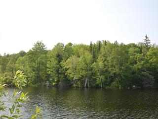 Terrain à vendre à Notre-Dame-de-Pontmain, Laurentides, Chemin  Caron, 12785018 - Centris.ca