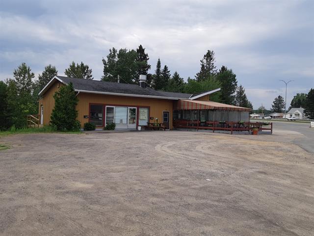 Bâtisse commerciale à vendre à Sainte-Agathe-des-Monts, Laurentides, 161, boulevard  Norbert-Morin, 15926700 - Centris.ca