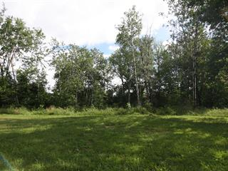 Terrain à vendre à Bedford - Ville, Montérégie, Rue  Craighead, 21211962 - Centris.ca