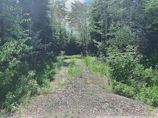 Lot for sale in Sainte-Christine-d'Auvergne, Capitale-Nationale, 55, Avenue du Cap, 16755341 - Centris.ca