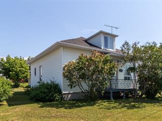 House for sale in Saint-Fabien, Bas-Saint-Laurent, 135, 1re Rue, 21951380 - Centris.ca