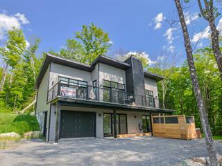 Maison à vendre à Saint-Donat (Lanaudière), Lanaudière, 50, Chemin du Versant, 20809133 - Centris.ca