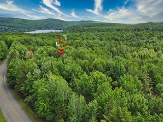 Lot for sale in Stanstead - Canton, Estrie, Chemin  Alger's Cove, 22071865 - Centris.ca
