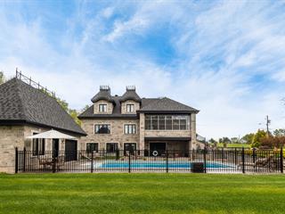 House for sale in Saint-Ours, Montérégie, 52, Rue  La Grande-Ourse, 14683333 - Centris.ca