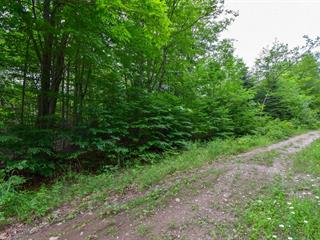 Lot for sale in Chénéville, Outaouais, Chemin des Sapins, 25743083 - Centris.ca