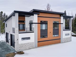 Maison à vendre à Saint-Joseph-de-Coleraine, Chaudière-Appalaches, 363, Chemin du Barrage, 21976365 - Centris.ca