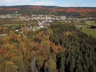 Terrain à vendre à Saint-Léon-de-Standon, Chaudière-Appalaches, Route de l'Église, 11716522 - Centris.ca