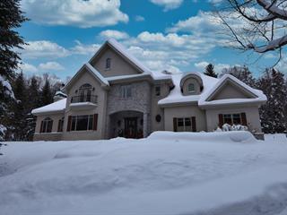 Maison à vendre à Sainte-Anne-des-Lacs, Laurentides, 33, Chemin des Amarantes, 16577851 - Centris.ca