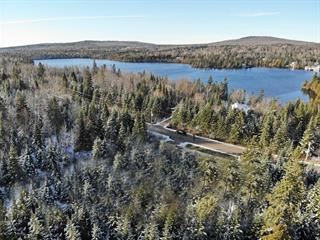Lot for sale in Saint-Marcel, Chaudière-Appalaches, Chemin du Lac-Fontaine-Claire Sud, 28478726 - Centris.ca