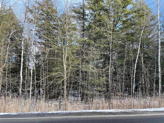 Terrain à vendre à Bromont, Montérégie, Chemin des Carrières, 12984786 - Centris.ca