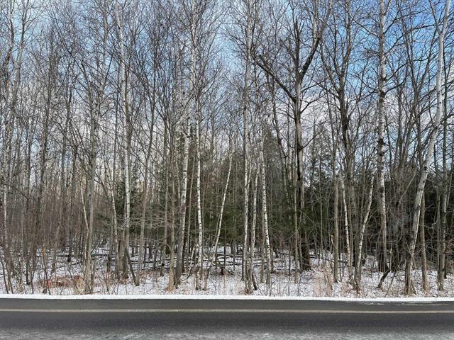 Terrain à vendre à Bromont, Montérégie, Chemin des Carrières, 23501308 - Centris.ca