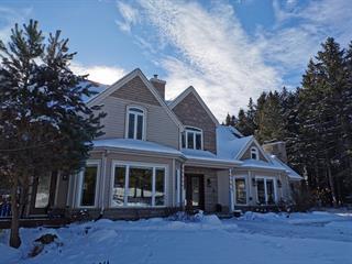 Chalet à vendre à Stanstead - Canton, Estrie, 330, Chemin de Magoon Point, 9943988 - Centris.ca