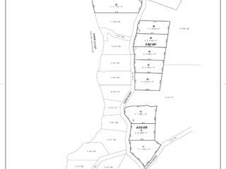 Lot for sale in Saint-Alexis-des-Monts, Mauricie, Rang du Lac-du-Castor, 12589667 - Centris.ca