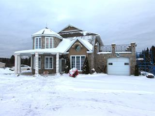 Maison à vendre à Saint-Raphaël, Chaudière-Appalaches, 170, Rang  Sainte-Marie-Anne, 24546505 - Centris.ca