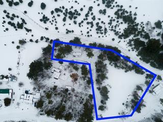 Terrain à vendre à Clarendon, Outaouais, 25, Chemin  McNeill Lake, 22489983 - Centris.ca