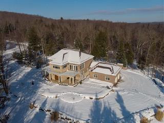 House for sale in Eastman, Estrie, 30, Chemin des Barboteurs, 14053523 - Centris.ca