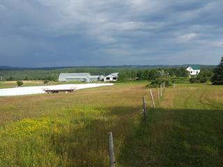 Terre à vendre à Saint-Cyprien (Bas-Saint-Laurent), Bas-Saint-Laurent, 104Z, Chemin du Canton, 23402806 - Centris.ca