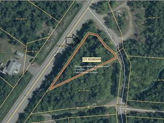 Lot for sale in Gore, Laurentides, Chemin du Lac-Barron, 12272356 - Centris.ca