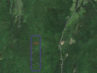 Terrain à vendre à Arundel, Laurentides, Chemin  Dubeau, 17214110 - Centris.ca