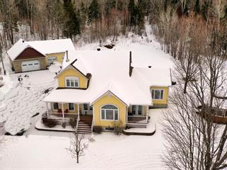 Maison à vendre à Notre-Dame-du-Laus, Laurentides, 640, Chemin du Ruisseau-Serpent, 23730069 - Centris.ca