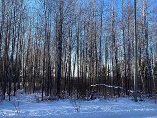 Terrain à vendre à Lamarche, Saguenay/Lac-Saint-Jean, 40, Rang du Lac, 24545373 - Centris.ca