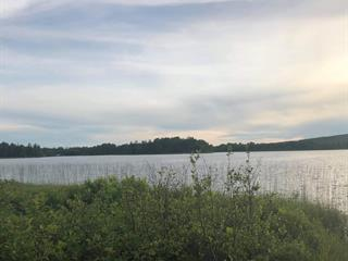 Lot for sale in Lamarche, Saguenay/Lac-Saint-Jean, 40, Rang du Lac, 24545373 - Centris.ca