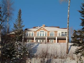 Maison à vendre à Saint-David-de-Falardeau, Saguenay/Lac-Saint-Jean, 980, 15e ch. du Lac-Sébastien, 13822339 - Centris.ca