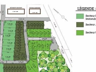 Terrain à vendre à Huntingdon, Montérégie, 22, Carré  Morrison, 12324367 - Centris.ca