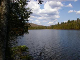 Lot for sale in Chertsey, Lanaudière, Chemin du Lac-Paré, 14248697 - Centris.ca