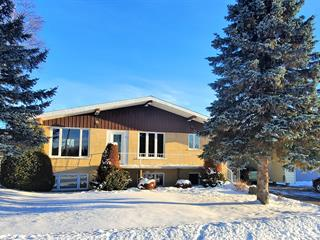 House for sale in Saguenay (Canton Tremblay), Saguenay/Lac-Saint-Jean, 32, Rue  Yvonne, 18101112 - Centris.ca