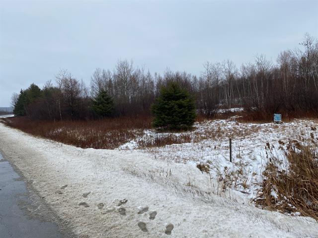 Terrain à vendre à Audet, Estrie, Route  204, 18797107 - Centris.ca