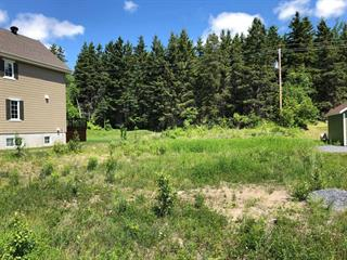 Lot for sale in Clermont (Capitale-Nationale), Capitale-Nationale, 113, Rue  Beauregard, 25528127 - Centris.ca
