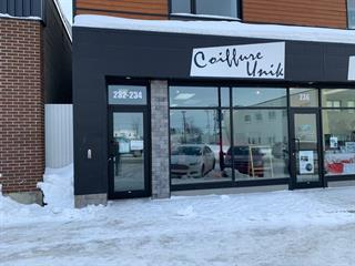 Local commercial à louer à Amos, Abitibi-Témiscamingue, 234, 1re Avenue Ouest, 13126876 - Centris.ca