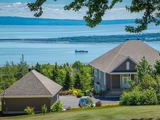 Maison à vendre à Les Éboulements, Capitale-Nationale, 308, Chemin du Versant, 20386561 - Centris.ca