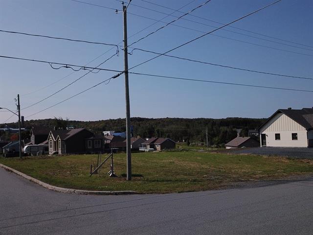 Terrain à vendre à Saint-Honoré-de-Shenley, Chaudière-Appalaches, 384, Rue  Ennis, 18141005 - Centris.ca