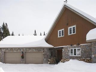 Cottage for sale in Sainte-Lucie-des-Laurentides, Laurentides, 2215, Chemin  Lahaie, 25802486 - Centris.ca