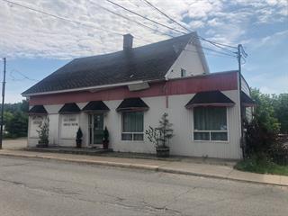 Duplex à vendre à Saint-Alexis-des-Monts, Mauricie, 108 - 110, Rue  Sainte-Anne, 22461100 - Centris.ca