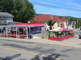 Bâtisse commerciale à vendre à Témiscouata-sur-le-Lac, Bas-Saint-Laurent, 794, Rue  Commerciale Nord, 19796200 - Centris.ca