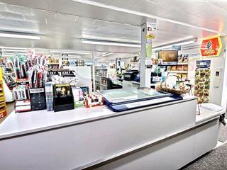 Commerce à vendre à Saint-Louis-du-Ha! Ha!, Bas-Saint-Laurent, 230, Rue  Commerciale, 10910036 - Centris.ca