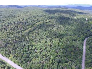 Terrain à vendre à Sainte-Marguerite-du-Lac-Masson, Laurentides, Montée  Gagnon, 26136329 - Centris.ca