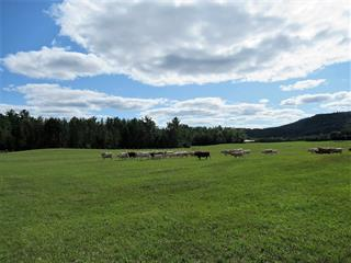 Terre à vendre à Notre-Dame-du-Laus, Laurentides, 731Z, Chemin de Val-Ombreuse, 16317002 - Centris.ca